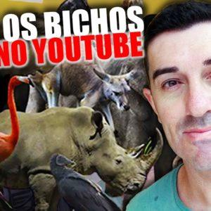 Como Criar Um Canal Com Sons dos Animais no Youtube