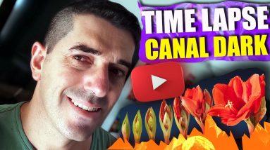 Como Fazer um Canal de Timelapse no Youtube e Monetizar | Canal Dark