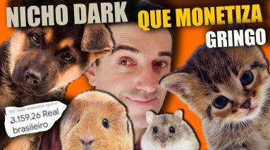 Como Criar um Canal DARK no Youtube Sem aparecer Nicho de Pets e Curiosidades